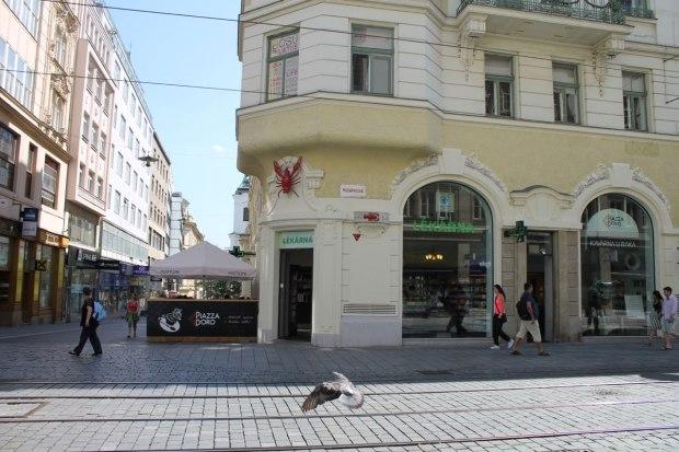 Brno11
