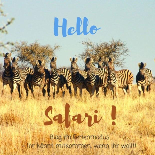 Hellosafari